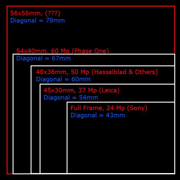 medium format size - Bare.bearsbackyard.co